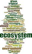 Ecosystem word cloud Stock Illustration