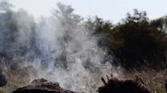 Smoke from a wood fire - stock footage