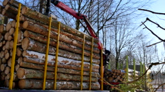 Dropping the logs on to a huge stack on a truck Stock Footage