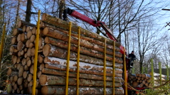 The truck is almost fully loaded with logs Stock Footage