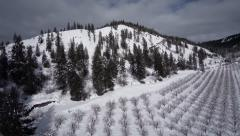 Aerial View: Rural Scenic Orchard Landscape Covered in Snow Arkistovideo