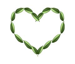 Stock Illustration of Beautiful Green Leaves in A Beautiful Heart