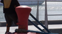 Harbor worker  placing mooring rope on mooring pole. close-up. Stock Footage