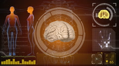 Human anatomy. Human brain. HUD background. Medical concept anatomical future Arkistovideo