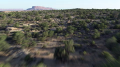 Fast flight over brushy mesa to reveal cliffs Stock Footage