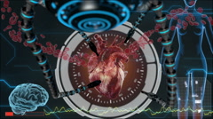 Stock Video Footage of Human anatomy. Human heart. HUD background. Medical concept anatomical future