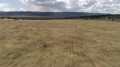Fast flight skimming sagebrush under stormy sky Stock Footage