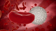 Blood cell, eritrocite inside organism view. Medical concept. HUD monitor - stock footage