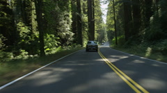 Rear view of a Driving Plate: Car travels west on the Redwood Highway near Stock Footage