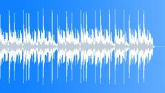 Acoustic Rock Stomp - 0:29 sec edit Stock Music
