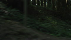 Right Side view of a Driving Plate: Car travels east on the Redwood Highway near - stock footage