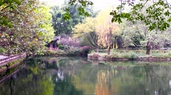 Beautiful landscape of the lake and trees in the city of Chengdu Chinese park. - stock footage