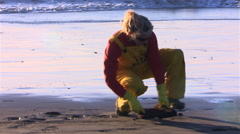 Volunteer cleaning oil from sand on a contaminated beach - stock footage