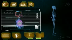 Stock Video Footage of Skeleton - Monitor Analysis in System - yellow 01