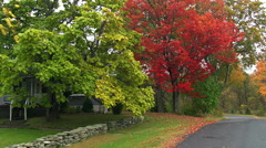 Following a narrow lane past a rural home among trees in early autumn colors Stock Footage