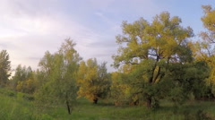 Sunset over the meadow. Krasny Yar, Lubinskiy District, Omsk Region, Russia Stock Footage