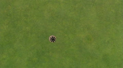 Overhead shot of hole on green and golf ball going in Stock Footage