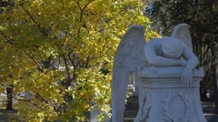 Angel in the Cemetery Crying - stock footage