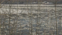 4k Frozen Ice Floating Down River Trees Winter Cold Snow Wilderness Forest Hills Stock Footage