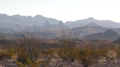 Pan of Desert Scenery at Big Bend National Park in 4k Stock Footage
