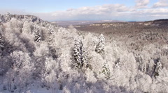 Aerial View Flight Above Winter Forest 2 Stock Footage