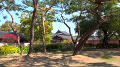 Territory of the Changdeokgung Palace. Seoul, South Korea Stock Footage