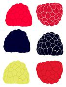 Collection with raspberries and blackberries Stock Illustration