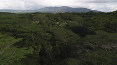 Over Wailua River Park, Kauai Stock Footage