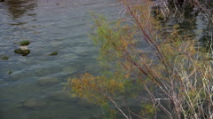 Right pan along northern shoreline of Sea of Galilee, Israel Stock Footage