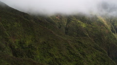 Close over tree-covered mountainside through rising mist, Hawaii. Shot in 2010. Stock Footage