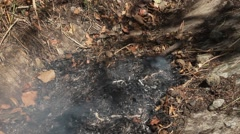 Pile of leaves burning Stock Footage