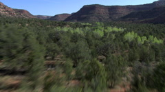 Flying over wide, wooded canyon in the Southwest Stock Footage