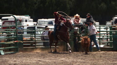 Ultra-slow motion shot of a cowgirl roping a calf at a rodeo Stock Footage