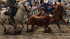 Ultra-slow motion shot of a cowboy bulldogging a steer at a rodeo Stock Footage