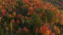 Low flight over autumn woods in rural New England Stock Footage