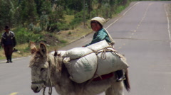 Child riding on donkey laden with bags of grain in Ecuador Stock Footage