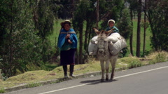 Mother with children and donkey near Cuenca, Ecuador Stock Footage