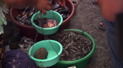 Woman selling fish at an open-air market in Ecuador Stock Footage