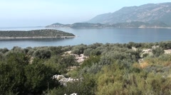 View above olive grove and the sea Stock Footage