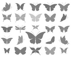 Butterflies graphic silhouettes - stock illustration