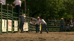 Bucking bull throwing rider in rodeo arena, close-up of bull Stock Footage