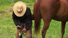 Farrier holding horse's hind foot between knees while clipping the fetlock Stock Footage