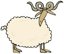 Curly horned sheep Stock Illustration