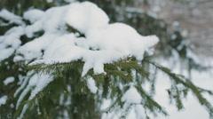 Woman Shake Off Snow  Stock Footage