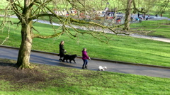 Mother and daughter walking dogs in a London park (1). Stock Footage