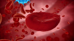 Virus, bacteria, microbe kills the blood cell, eritrocite. Medical concept. Stock Footage