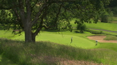 Man putting on a hilly golf course, seen from above at a slight distance; tree Stock Footage