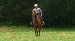 Cowboy on a sorrel horse trotting toward camera, turning side-on facing left Stock Footage