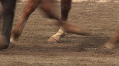 Close-up of horses' legs and hooves in blurred action on rodeo arena sand Stock Footage