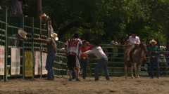 Bull bucks off rodeo cowboy, threatens clown before trotting back to chute - stock footage